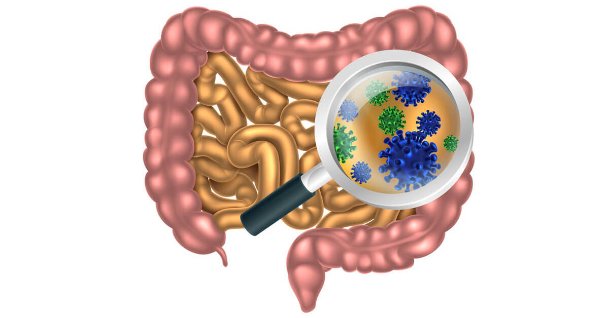 Did you know the digestive system is closely connected to oral health? Your oral and gut microbiome create the mouth-body connection.